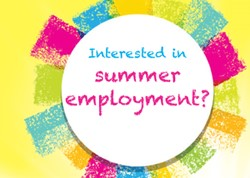 Sun graphic. Are you interested in a summer job?