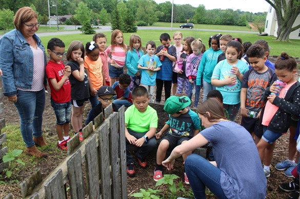 Group of students learning about compost in the garden