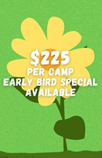 $225 per class. Early bird pricing available